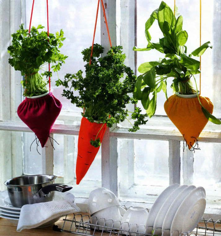 ideas para decorar con plantas homeplants pots