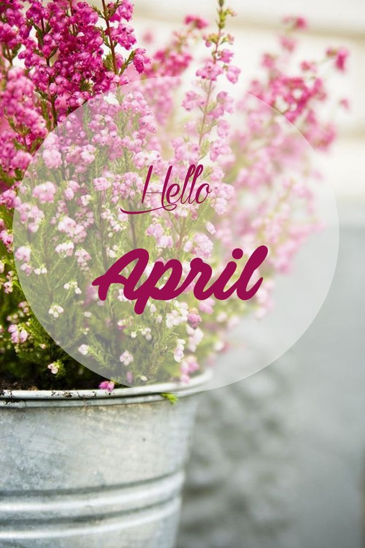 Hello April. Springtime QuotesSeasons ...