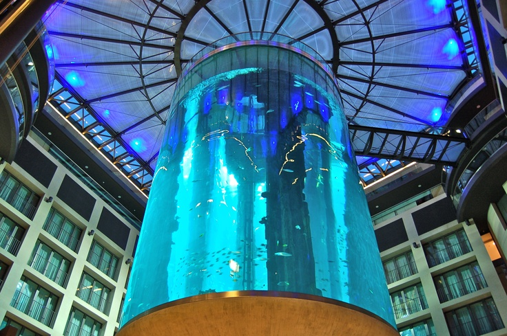 aquarium im domaquarée berlin  anzeigen