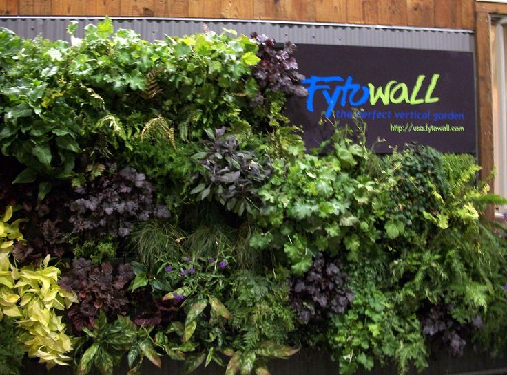 103 best Living Walls images on Pinterest Vertical gardens