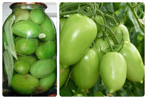 Попробуйте простой рецепт заготовки зеленых помидор с чесноком и сухой горчицей без стерилизации.http://zagotovochkj.ru/marinovannye-zelenye-pomidory-bez-sterilizacii-na-zimu.html