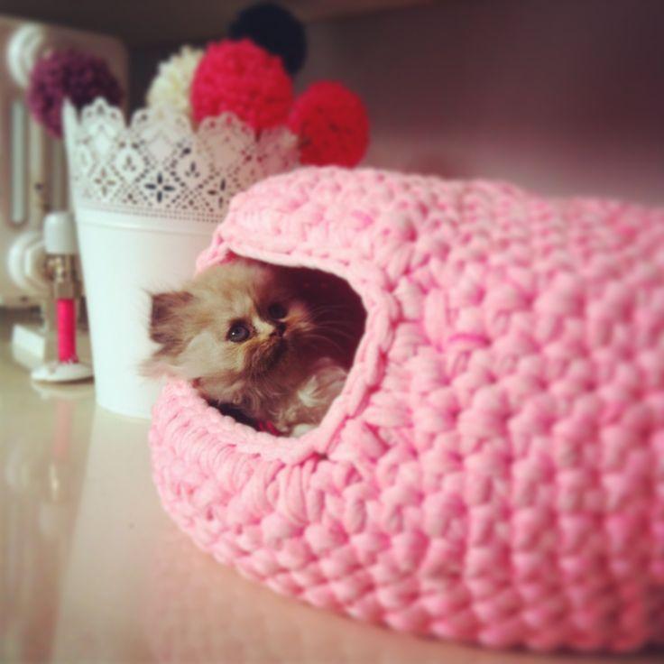 Crochet cat house crochet Pinterest Cats, Rabbit and ...