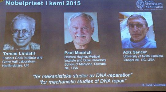 Ganhadores do Nobel de Química pela descoberta de mecanismos que reparam erros na estrutura do DNA (Foto: Divulgação/AP)