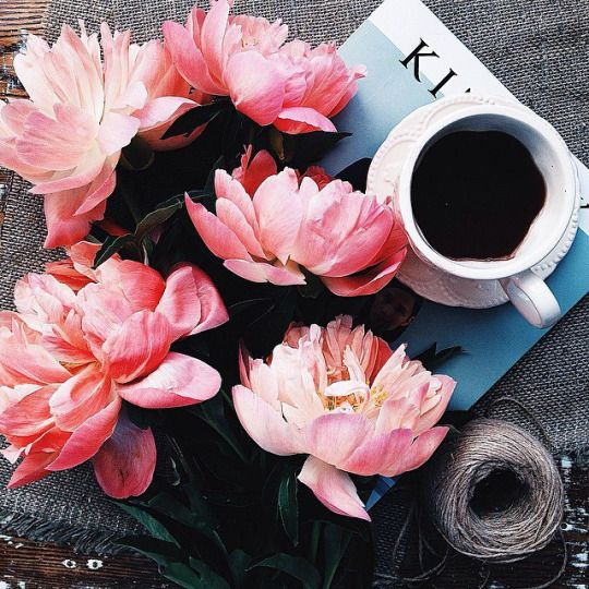 coffee | flowers | flat lay photo styling