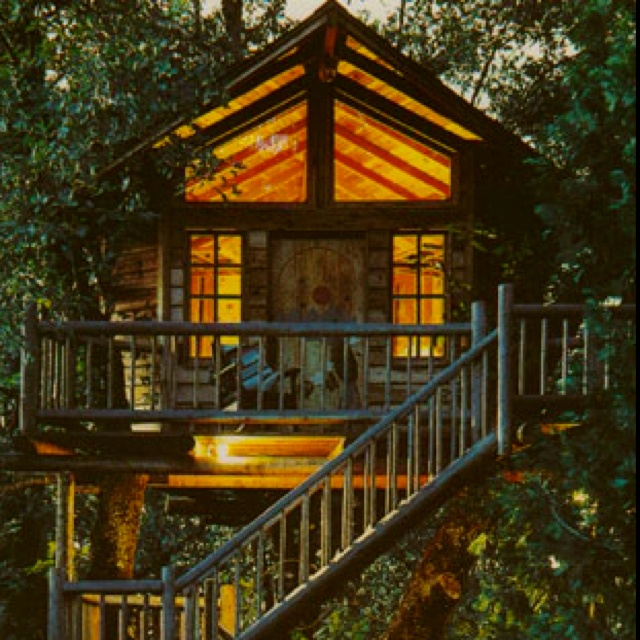 Treehouse hotel in Oregon.... Very Possible. Oregon is only a car ride away!