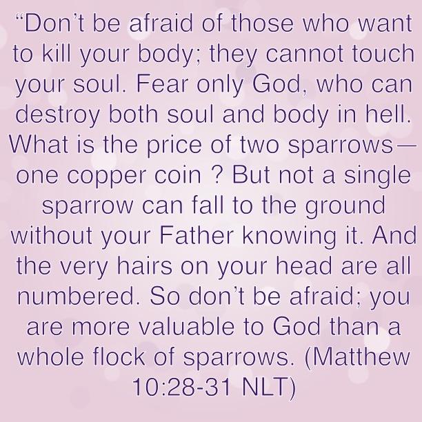 Words from Jesus!!!! Bible Verse: Matthew 10:28-31
