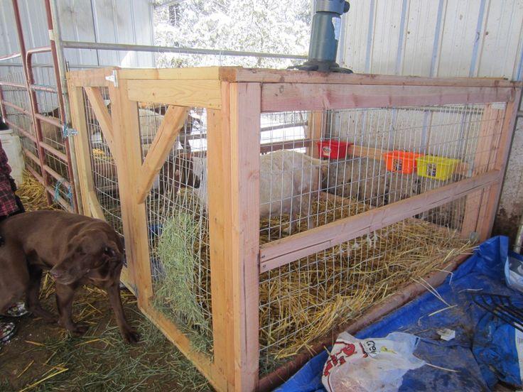 goat stall pictures | Goat Kidding Stalls | Quartz Ridge Ranch