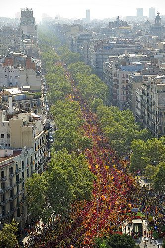 "Barcelona - Diada, 11 September 2014 - ""In search of our independence"""