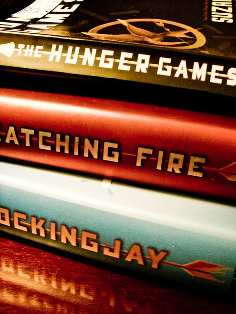 The Hunger Game series...AMAZING