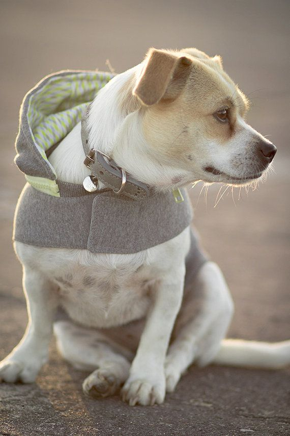 Sniffy's Hoodie in Yellow 4 sizes by PawPawPawBoutique on Etsy