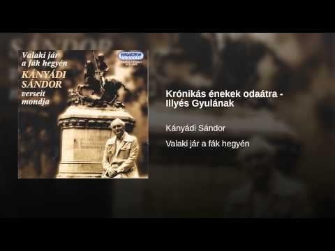 Krónikás énekek odaátra - Illyés Gyulának