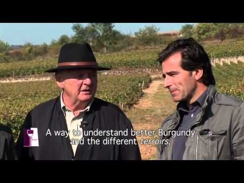 Discovering great white wines from Puligny-Montrachet with Olivier Leflaive Episode 5/25 - YouTube