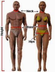 STRENGTH FIGHTER™: U.S. Navy Method & YMCA formula to Estimate Your B...