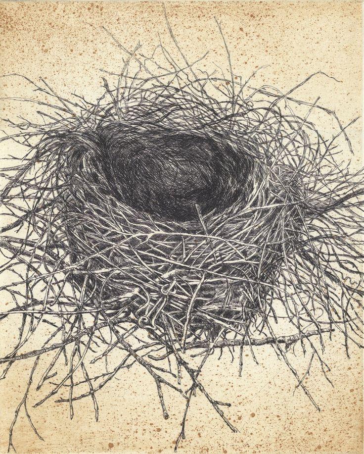Australian Magpie nest etching  Artist Sandi Rigby