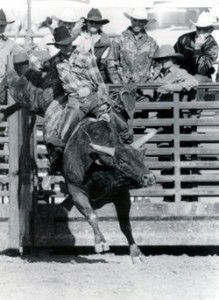 Red Rock, the unridden Rodeo Bull. Unridden first 309 rides, 1987 PRCA World Champion, 1988 Challenge of Champions, went to the NFR 4 consecuative years, inducted into Prorodeo Hall of fame in 1990.