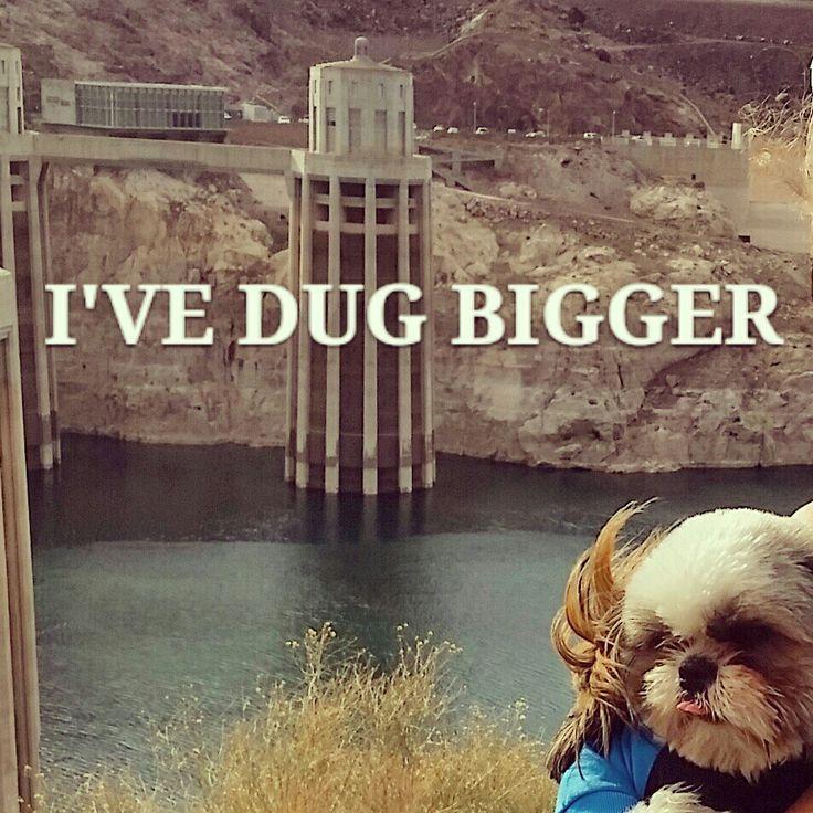 Meh. Hoover shmoover. Ive dug bigger