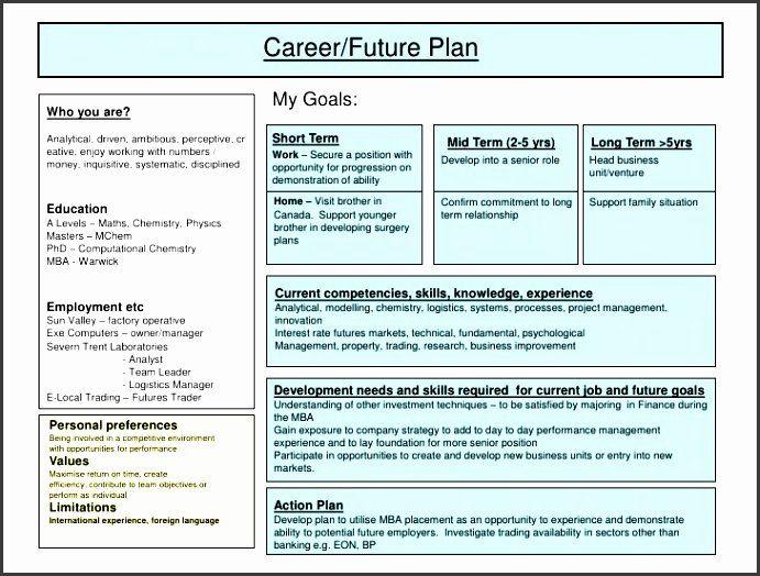 Career Action Plan Template Luxury 5 Job Sampletemplates Development Example Planning Warwick Personal Statement Medicine Ifp Requirement