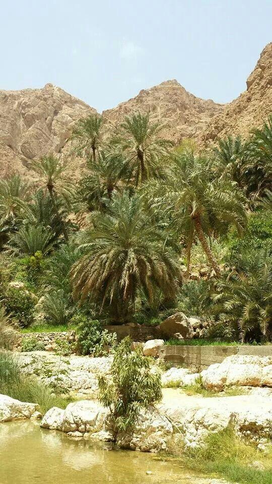 Wadi Shab -Sur -Oman