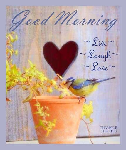 Good Morning Love Heart Images : Best images about morning coffee on pinterest