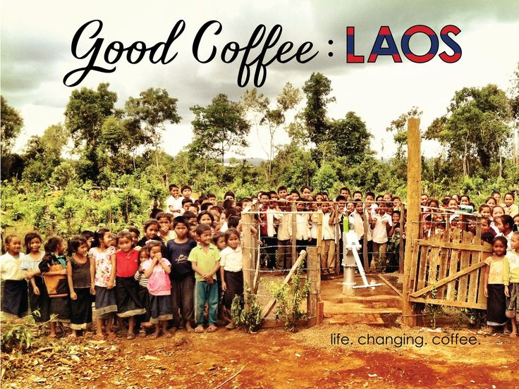 TOGETHER WE CAN: Empower over 2,000 families living in Laos by being the FIRST EVER to source Lao specialty coffee to North America!