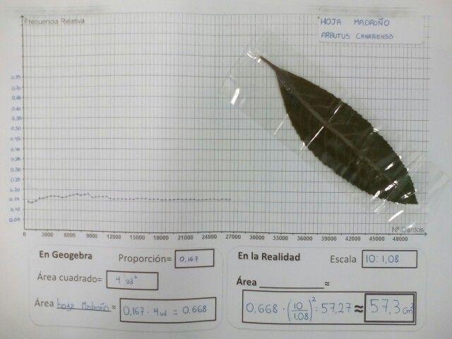 Viendo como se estabiliza la proporción(frecuencia relativa) en los dardos aleatorios de la hoja de Madroño