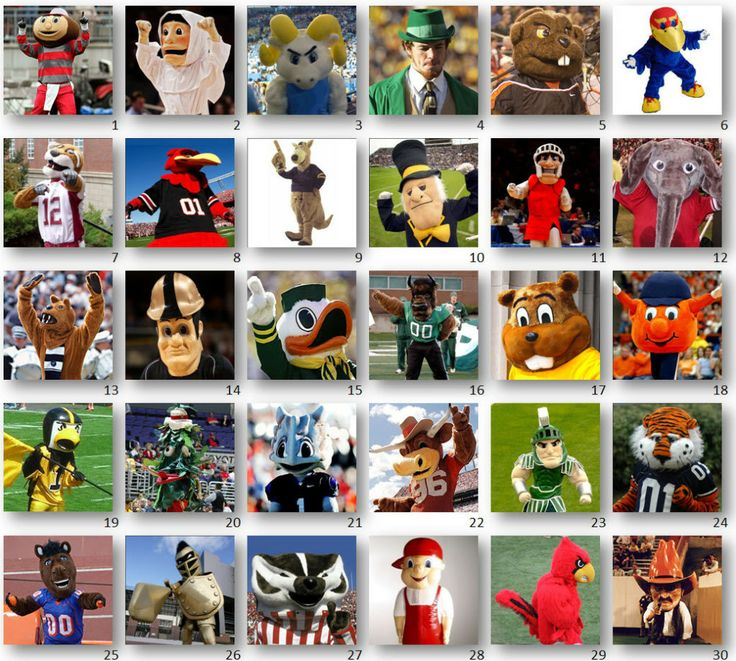 College Football Team Mascots Colleges by mascot images