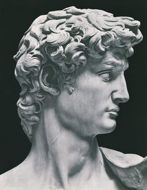 Michaelangelo David, 1501 - 1504 Photograph by Anderson Reproduced from Michel Ange, Sculptures Editions Tel, Paris, 1935