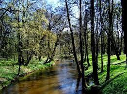 rzeka Wieprz Poland