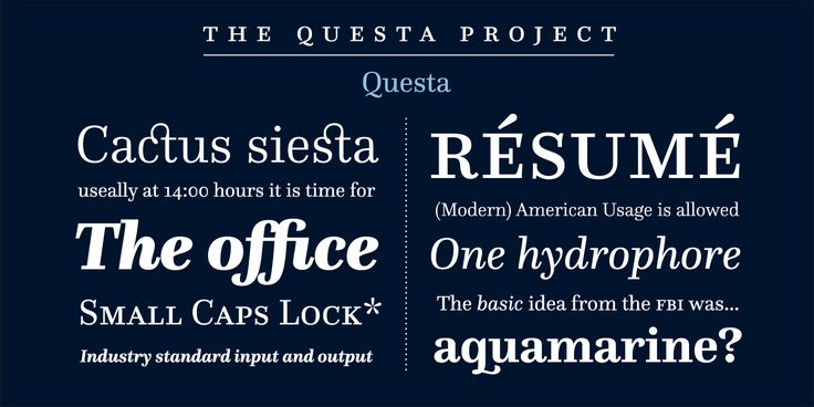 Check out the Questa font at Fontspring.