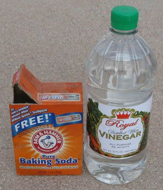Instructions for at home humane euthanasia of small animals/birds using vinegar and baking soda.