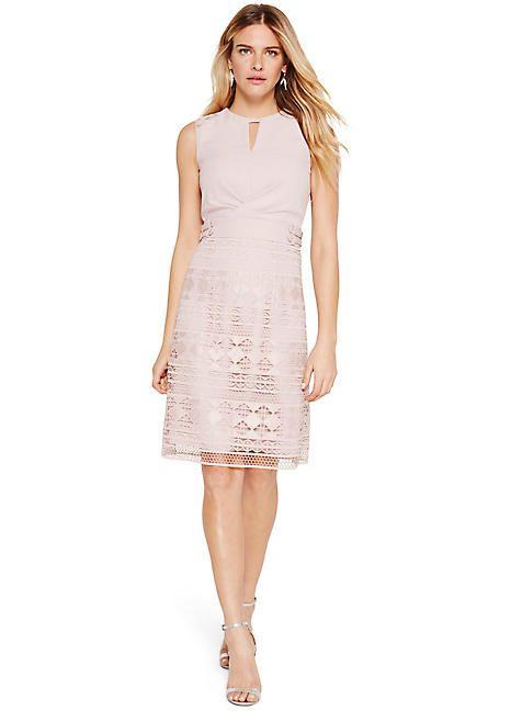 ec31a7fb3c3 Damsel in a Dress Porta Lace Dress in 2019 | New In: Damsel in a ...