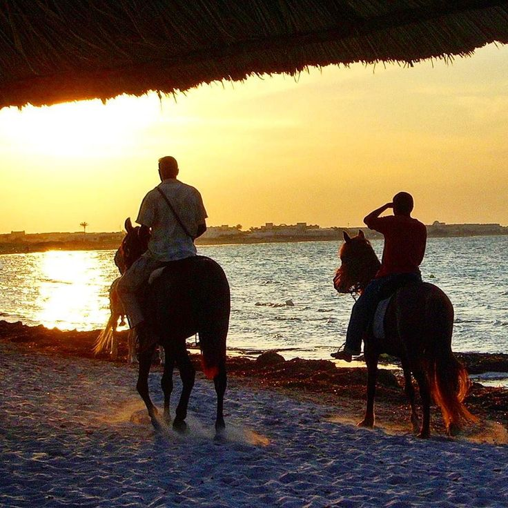 Horse riding on the beach at sunset  Djerba Tunisia.