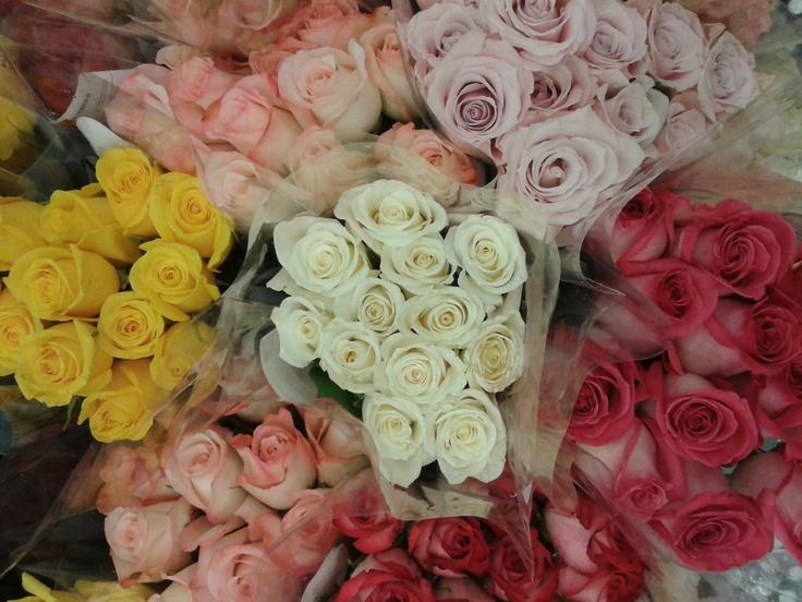 Kroger Flowers