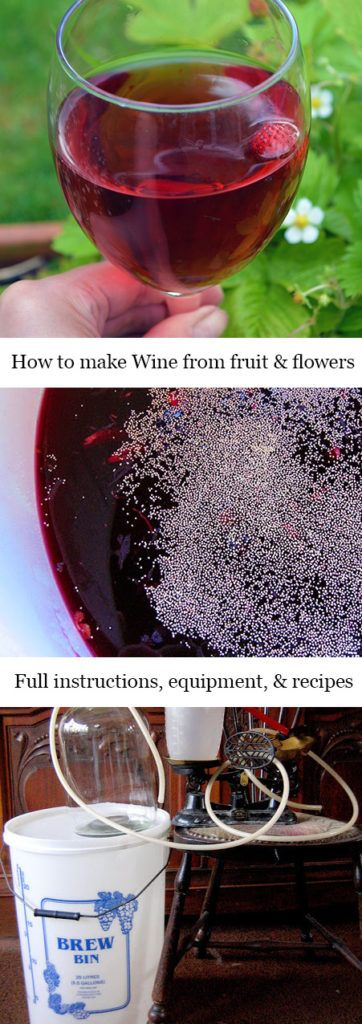 How to make Wine using fruit & flowers. Includes recipes, detailed instructions, equipment list, and an A-Z of edibles you can make wine with.