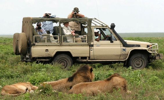 Tanzania is an ideal destination for travelers. So the #TanzaniaSafari is the lifetime experience for you. More info @ https://www.northernmasailandsafaris.com/
