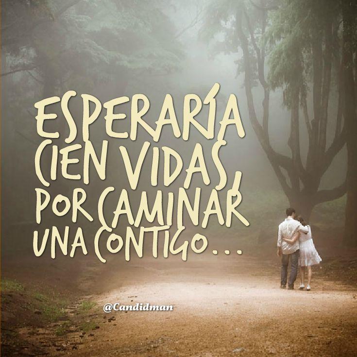 """Esperaría cien vidas, por caminar una contigo..."" #love #amor #frasesDeAmor…"