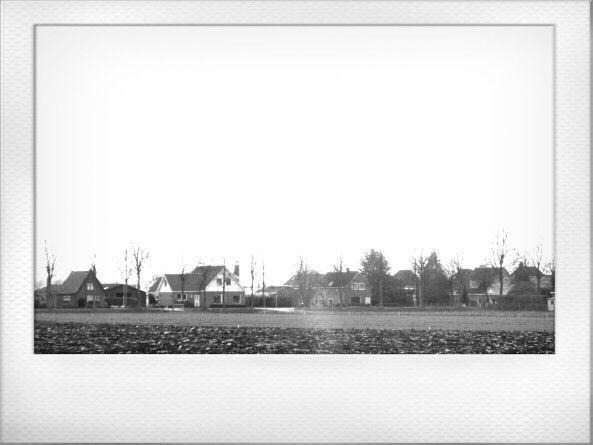 Gezicht op Zwaagdijk-West vanaf het leekerpad februari 2014