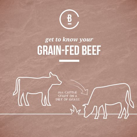 Get to know your beef and learn how the grain-fed process works.