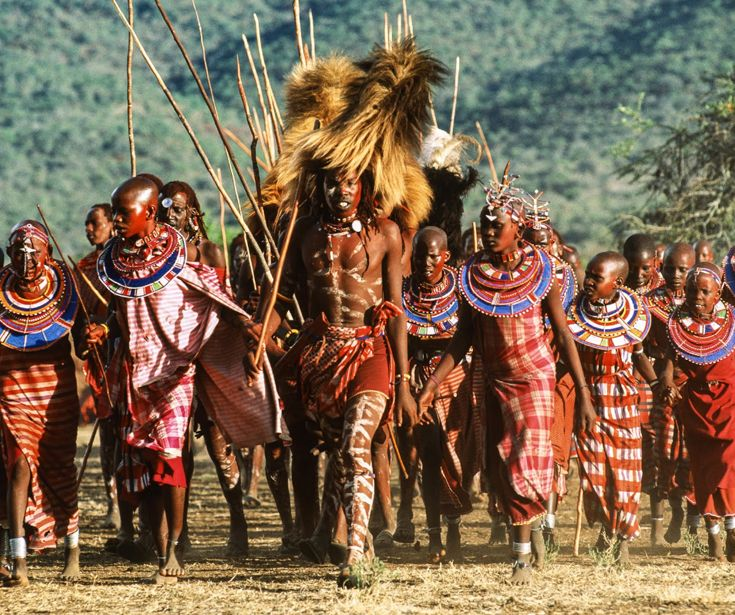 Best Kenya Chege Foundation Images On Pinterest Kenya - Maasai tribe wild animals attend wedding kenya