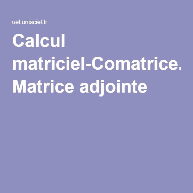 Calcul matriciel-Comatrice. Matrice adjointe