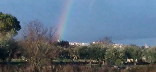 arcobaleno-preview