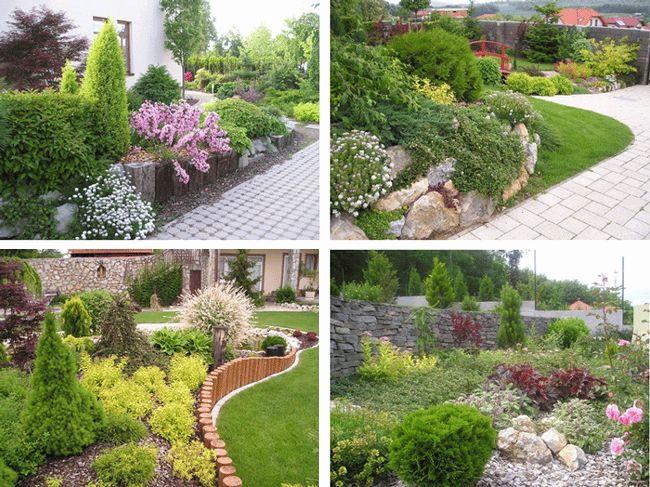 výsadba - okrasné rastliny (živé ploty, skalky, vresoviská, strešné záhrady)