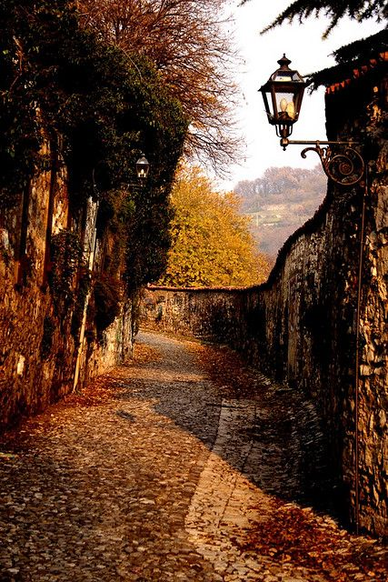 Brescia, Italy (by Paolo).....The road that goes from S. Giulia Abbey to the Roman Gate near the Castle, called Porticula Sancti Eusebii in the Middle Ages.  Autumn still resist