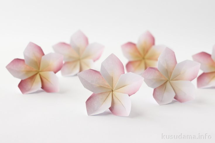 Plumeria flowers    download link is a zip file but it has the tut one page at a time