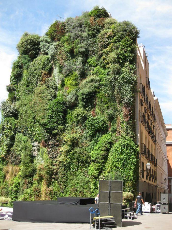 Vertikale Bepflanzung Die Fassade Von Diesem Gebaude Ist Voll Bepflanzt In 2020 Vertikaler Garten Grune Architektur Grune Fassade