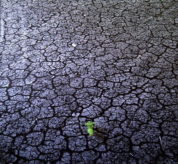Dry Season, Print on Photo Paper, 2011, By Sugeng Hendarto