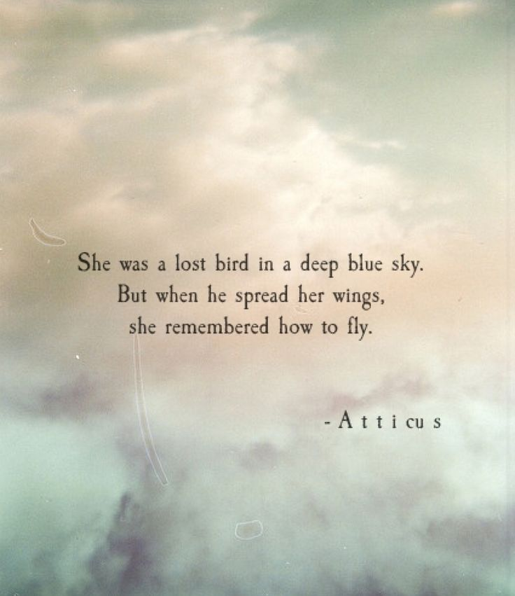 Remember how to fly