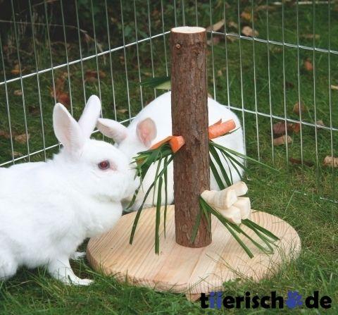 die besten 17 ideen zu kaninchen spielzeug auf pinterest hasen kaninchenfutter und hauskaninchen. Black Bedroom Furniture Sets. Home Design Ideas