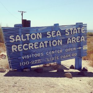 What to see in Palm Springs, California. Visit the Salton Sea, the Desert Zoo, Palm Springs Air Museum and more.