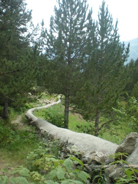 Título: senda Lugar: Pirineos Autora: La Luna Roja Texto: Seguir nuestro camino es fácil cuando nos dejamos fluir